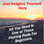 Fishing Rods For Beginners